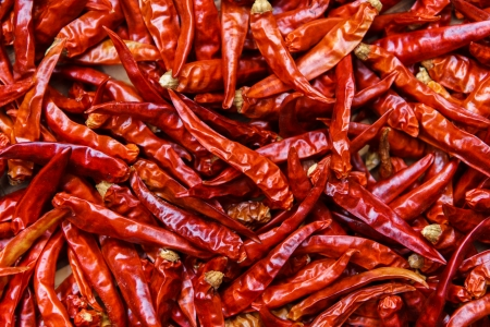 red chilli pepper plant: The Dried Chilli