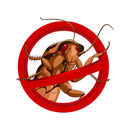 No cockroach Vector