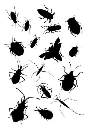 Silhouettes of true bugs Stock Vector - 17354442