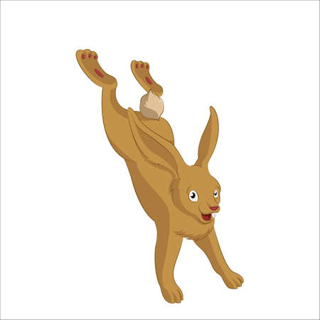 brown hare:  image of brown funny cartoon hare