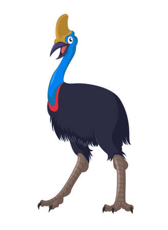 emu: Vector image of cartoon australian ostrich cassowary