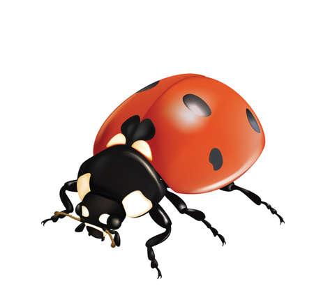 Ladybug Stock Vector - 18663667