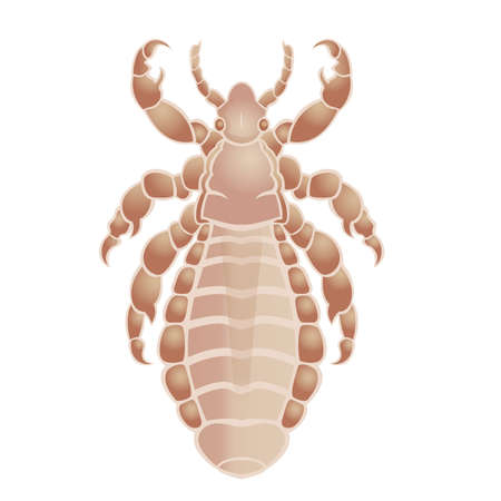 Vector image of simbol of  big louse Stock Vector - 18663649