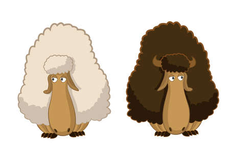 image of two cartoon funny sheep Vector