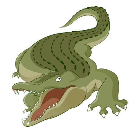 Vector image of cartoon hungry big crocodile