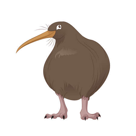 zealand: Vector image of the cute smiling cartoon kiwi