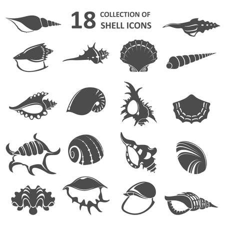Vector image of collection of shell icons Vector