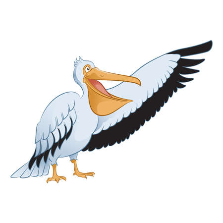 character traits: cartoon showing Pelican Illustration