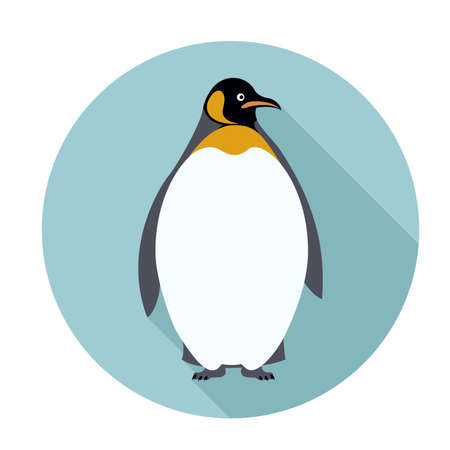 flightless: Vector image of an flat icon with Penguin Illustration