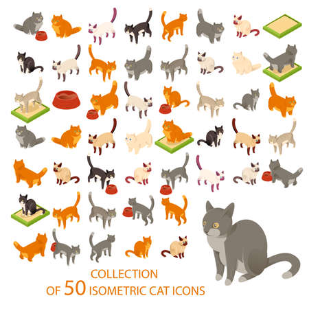 kitten cartoon: Vector image of a big set of cat icometric icons