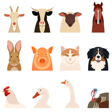 Vector image of a set of flat icons of farm animals Illustration