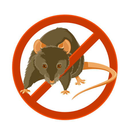 image of a rat in the disable sign Illustration