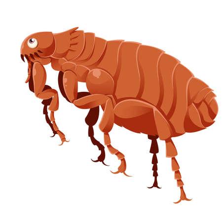 image of a cartoon brown flea