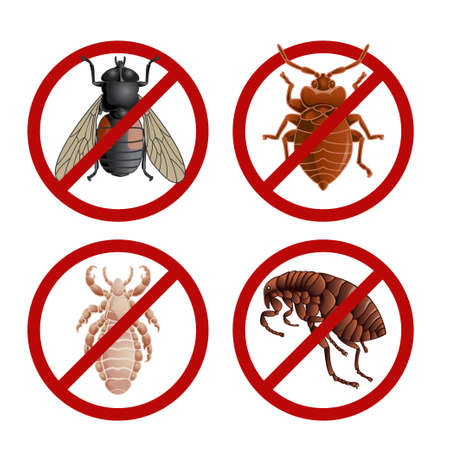 louse: Vector image of set of disable signs with pest insects