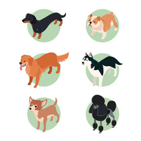 huskies: Vector set of isometric icons of various dogs