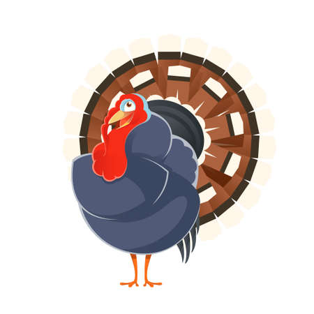 turkey: Vector image of a happy cartoon turkey