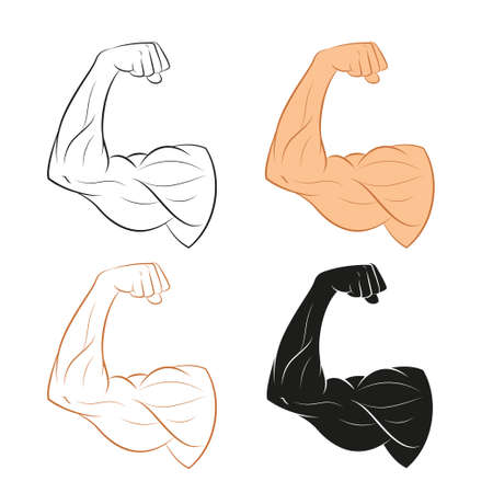 muscle boy: Vector image of  set of muscle arms