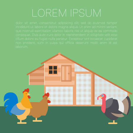 chicken coop: Vector image of a banner with henhouse and domestic birds