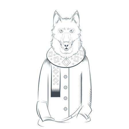 festal: image of a black and white wolf with coat and scarf