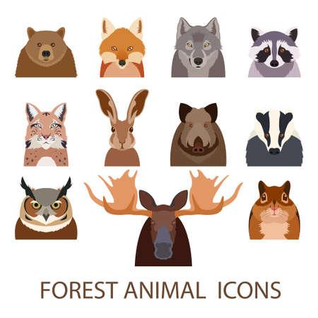 animales del bosque: imagen de conjunto de iconos planos del animal del bosque Vectores