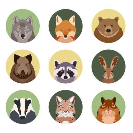 imagen de conjunto de iconos planos del animal del bosque