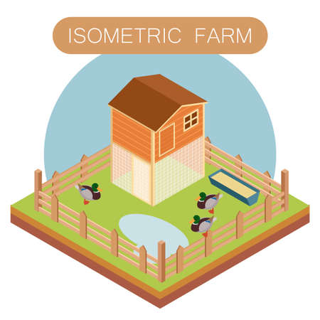 offspring: Vector image of Isometric farm house for ducks