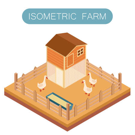 patio set: Vector image of Isometric farm house for goose