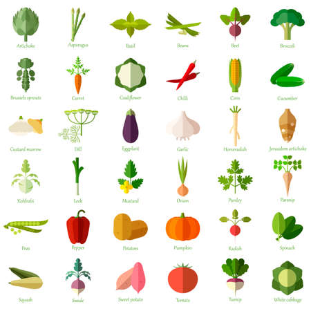 image of the vegetable flat icons