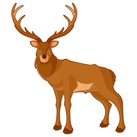 Vector image of the Cartoon smiling deer 일러스트