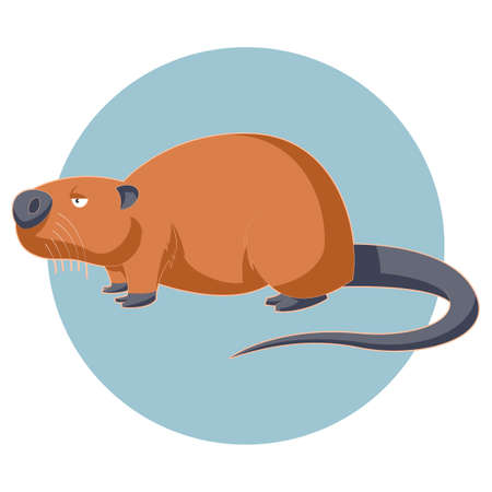 nutria: Vector image of the Cartoon brown nutria Illustration