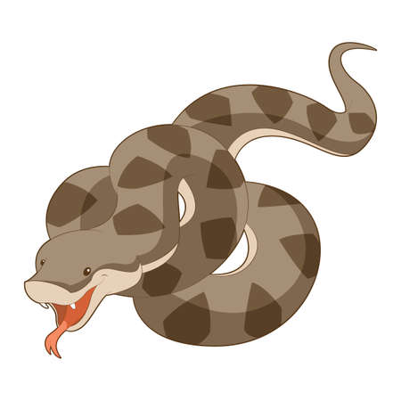 anaconda: image of the  Cartoon smiling Viper