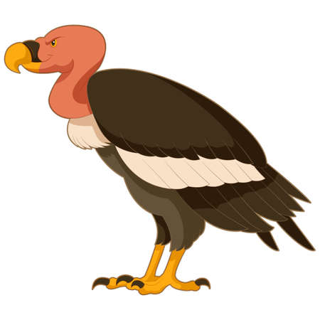 vulture: image of the  Cartoon  smiling Vulture