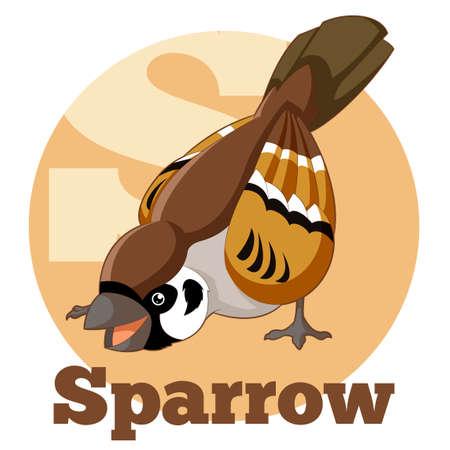 sparrow: Vector image of the ABC Cartoon Sparrow
