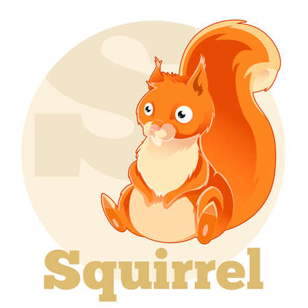 children s book: Vector image of the ABC Cartoon Spuirrel