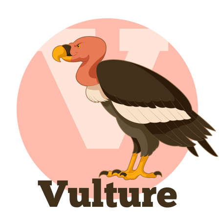vulture: Vector image of the ABC Cartoon Vulture