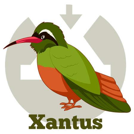 x games: Vector image of the ABC Cartoon Xantus