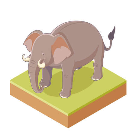 Vector image of the Isometric Gray Elephant Illustration