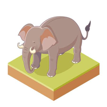 Vector image of the Isometric Gray Elephant Illustration