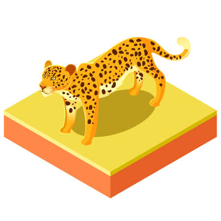 panthera: Vector image of the Isometric leopard on a square ground
