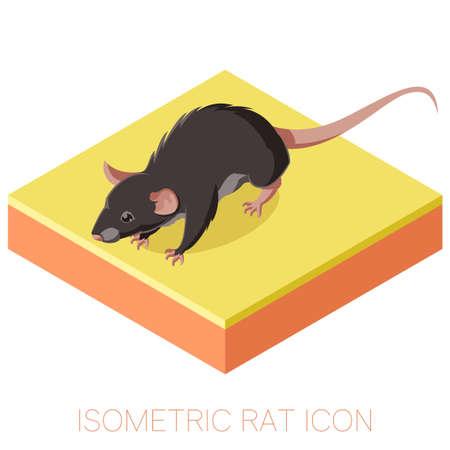 Vecor Bild der isometrischen Ratte-Symbol auf einem quadratischen Grund