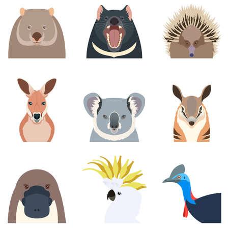 wombat: Imagen del vector de los iconos planos animales australianos