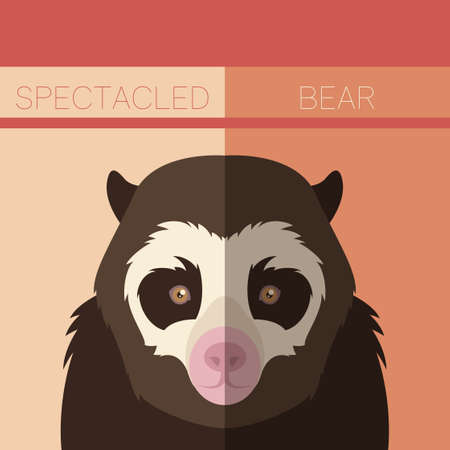 spectacled: Vector image of the Flat postcard with Spectacled Bear Illustration