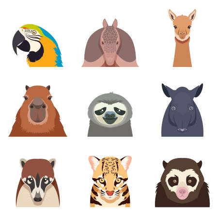 variety: Vector image of the Set of south america animals flat icons Illustration