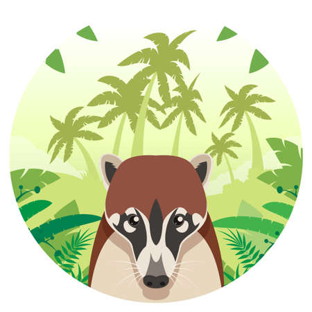 Flat Vector image of the Coati on the Jungle Background Illustration