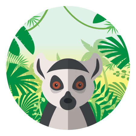 national park: Flat Vector image of the Lemur on the Jungle Background Illustration