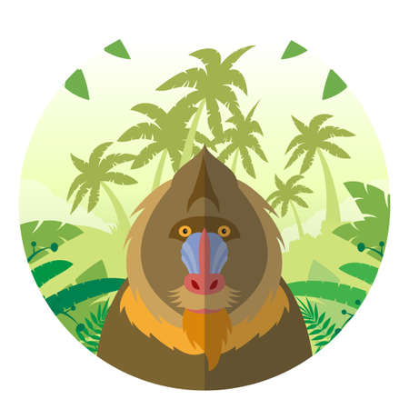 Flat Vector image of the Mandrill on the Jungle Background Illustration