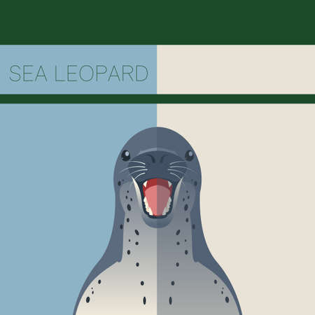 floe: Vector image of the Sea Leopard flat postcard