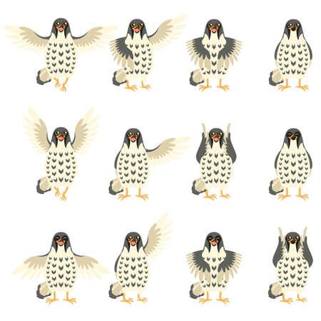 Vector afbeelding van de verzameling van Falcon Flat iconen