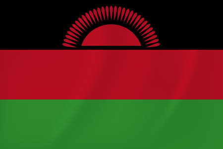 Vector image of the Malawi waving flag