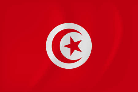 Vector image of the Tunisia waving flag